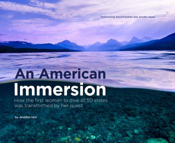 An American Immersion book cover