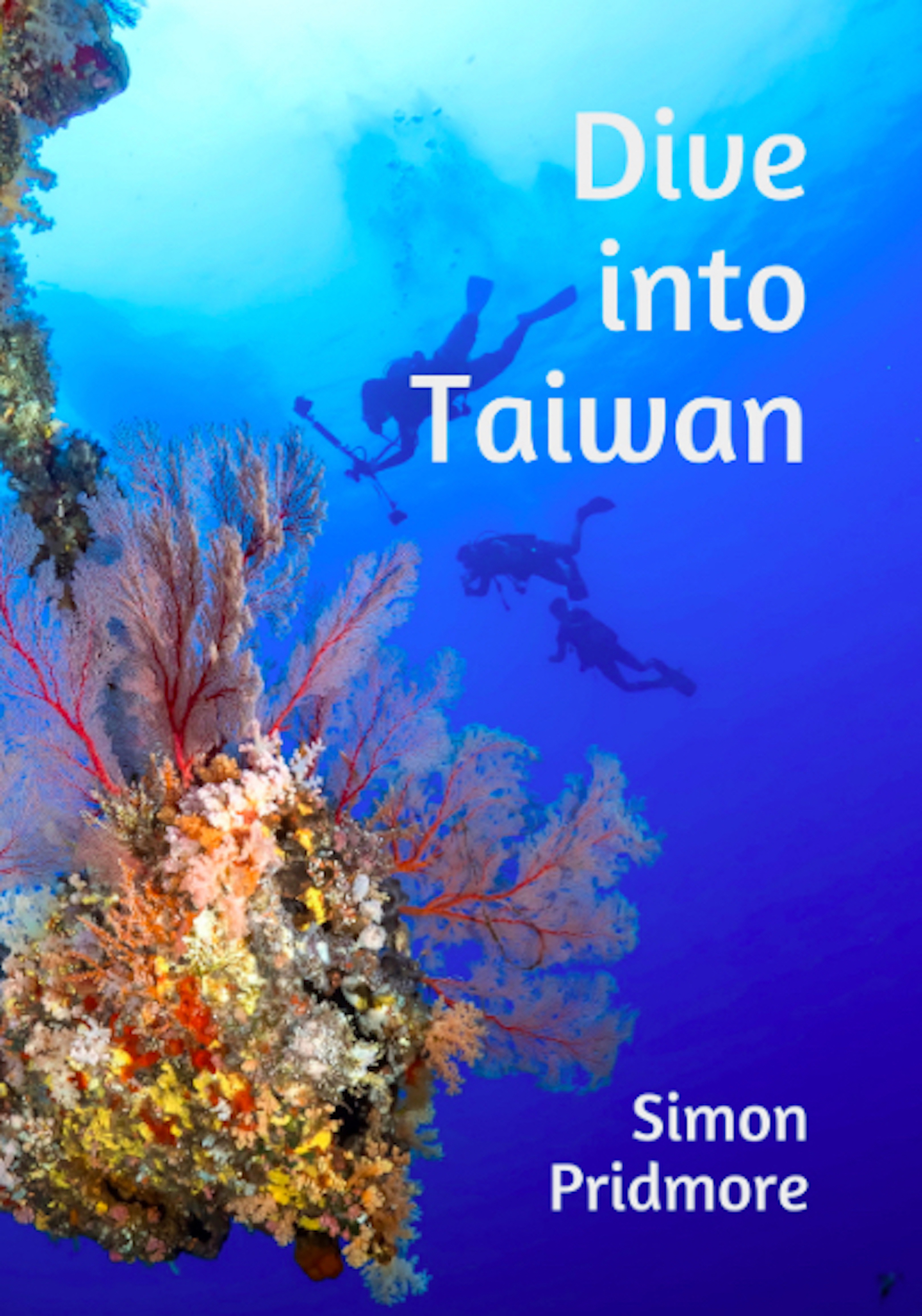 Dive into Taiwan book cover