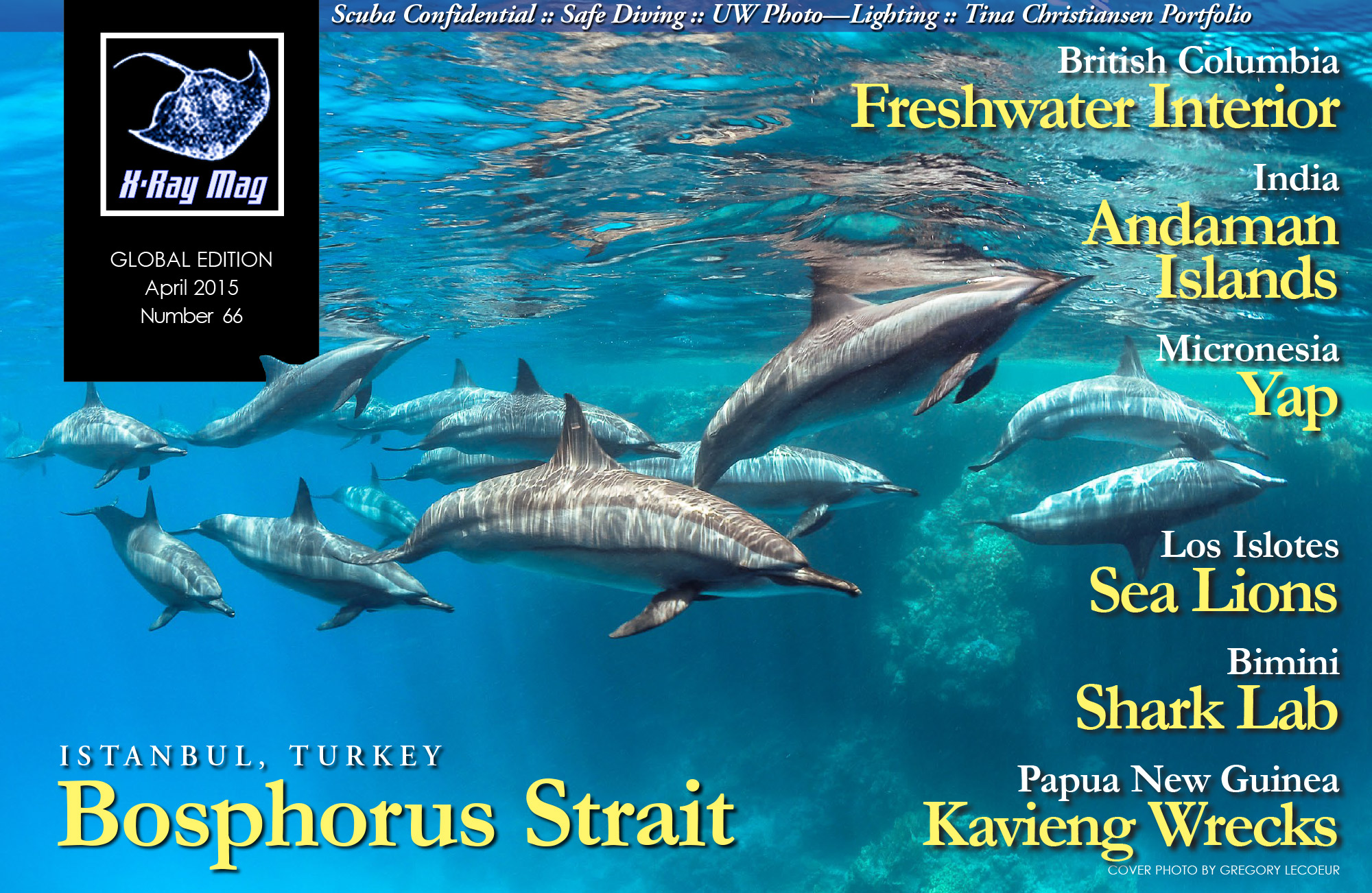 Cover image issue 66   Spinner Dolphins, Red Sea, Egypt