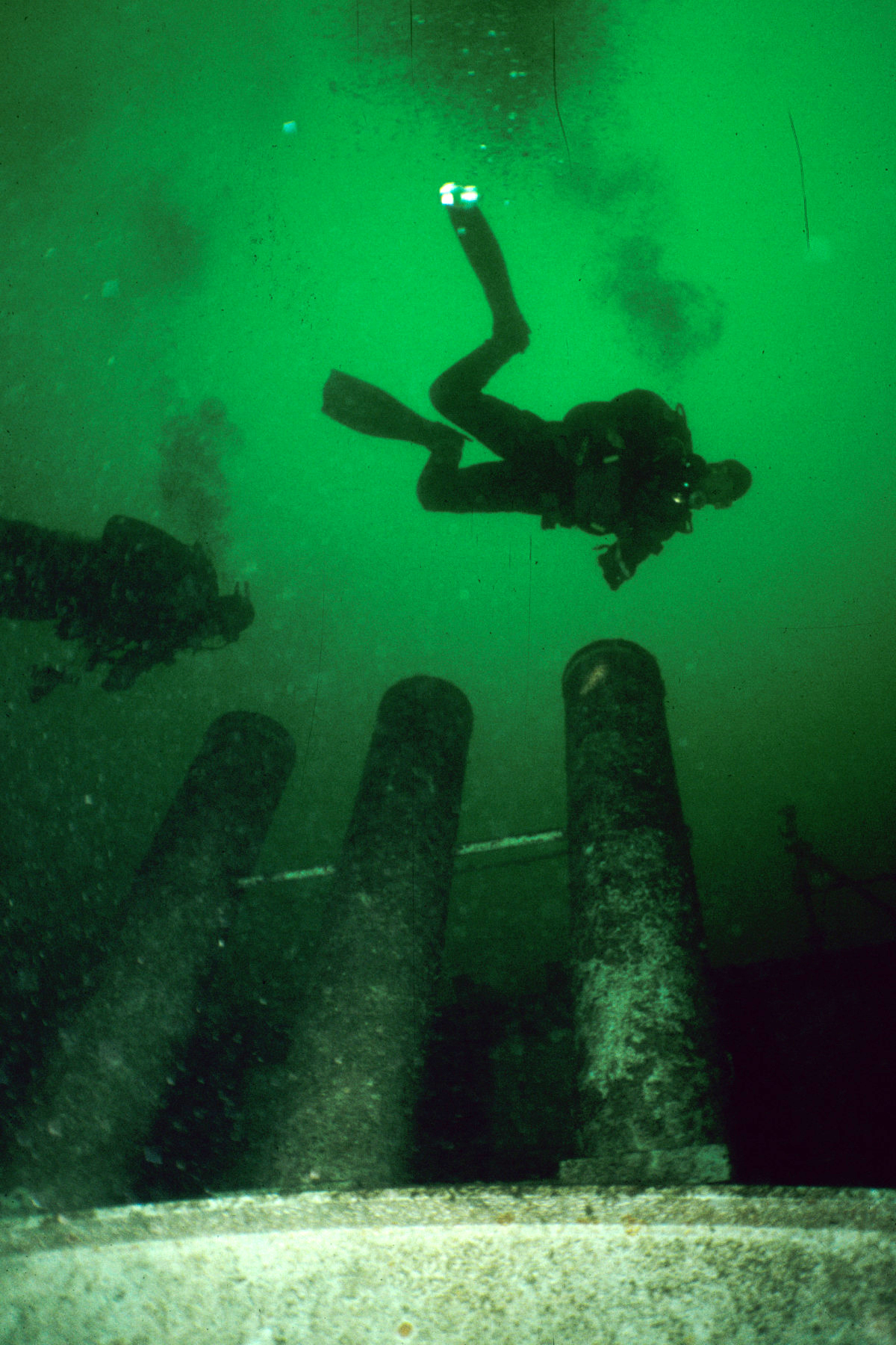 Diving The Hot Spots Of Vancouver Island X Ray Mag