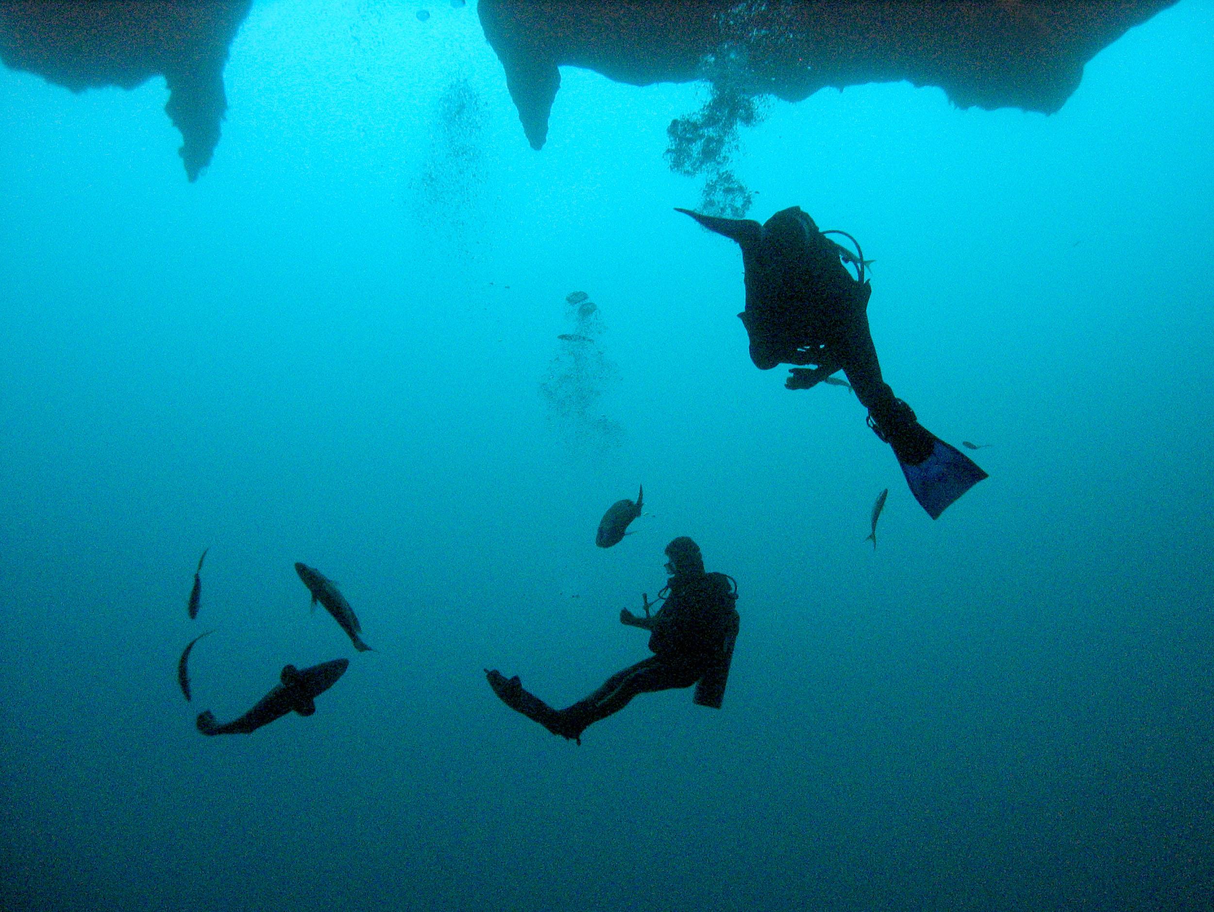 Muerte en el Blue Hole - Belize Cayes Foro
