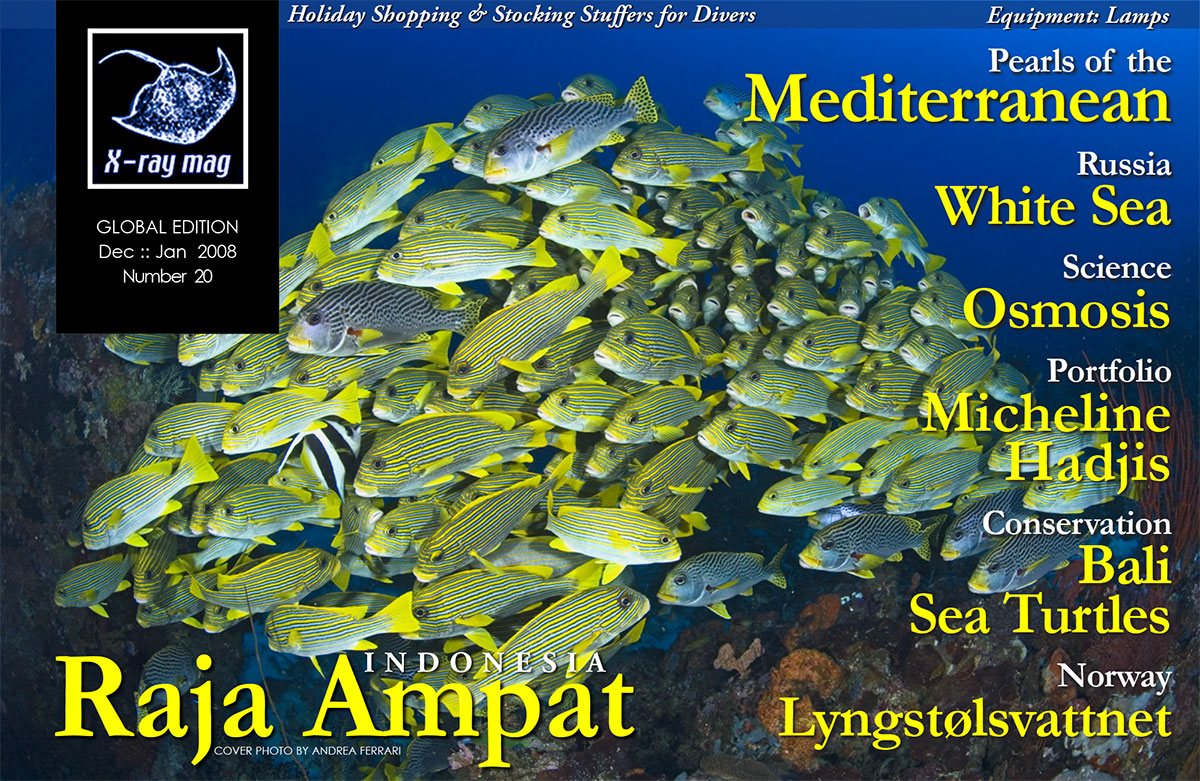 White Sea in the Russian North. Dive lamps - how to choose. Osmosis explained. How to save a rebreather diver. Reports and news from DEMA and Antibes ...