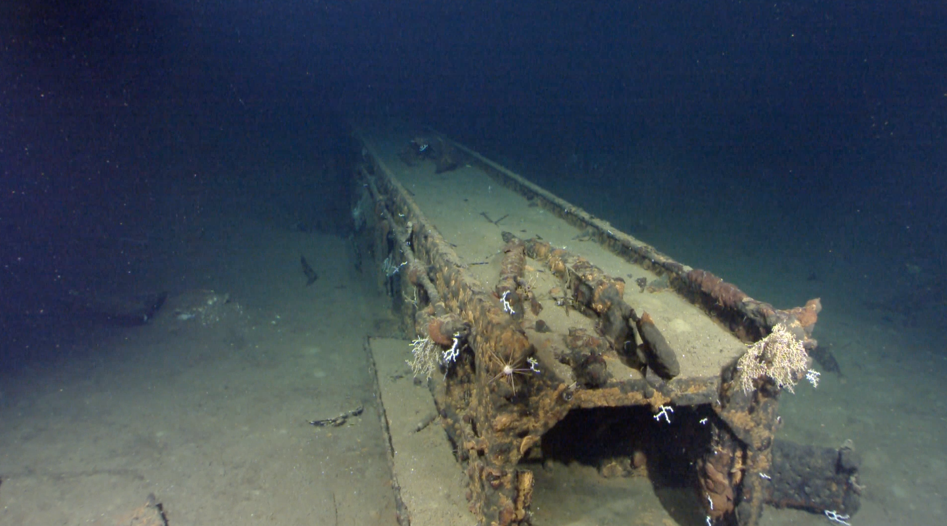 wwii japanese battleship musashi found x ray mag