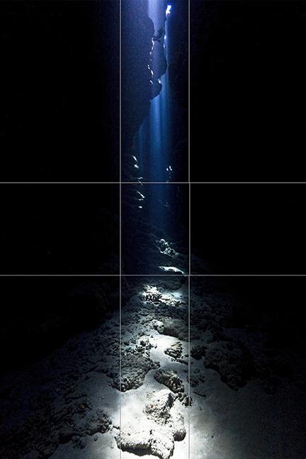 Fibonacci Numbers in Underwater Photography | X-Ray Mag