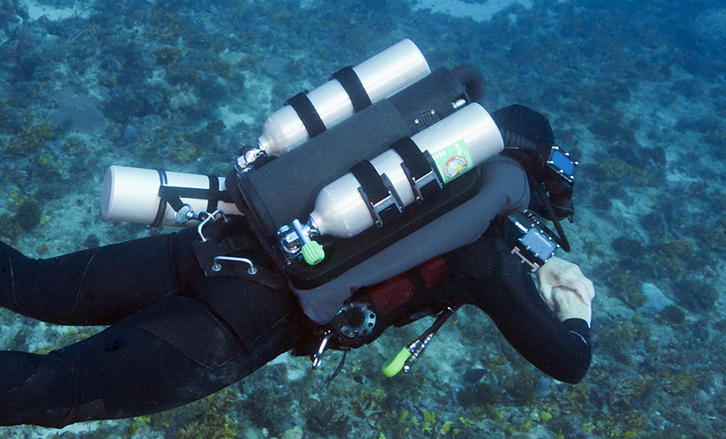Dive Rite S Xt Ccr Wing X Ray International Dive Magazine