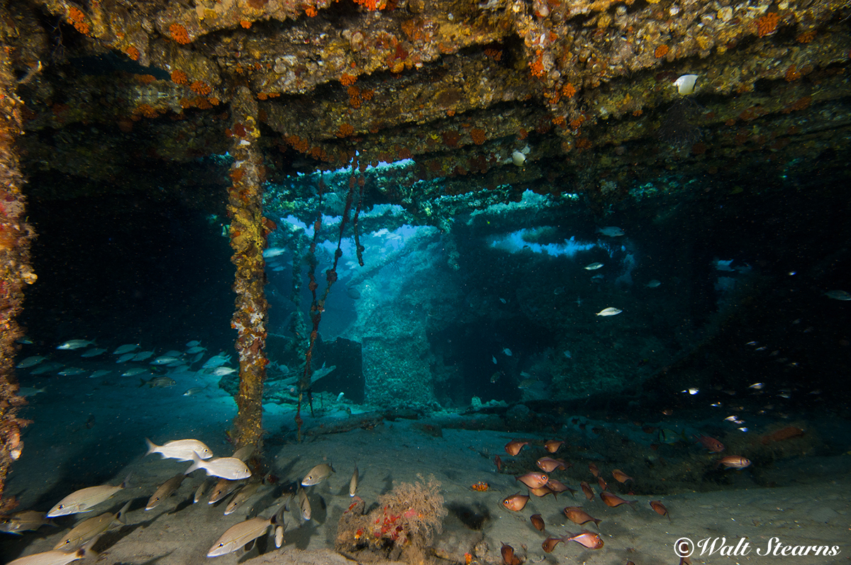 Inside of the Mizpah Wreck.